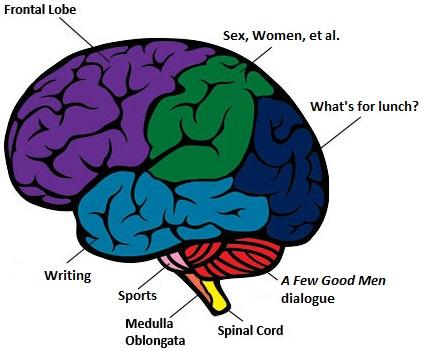 My Brain Regions